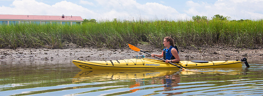 Kayaking Shem Creek with Coastal Expeditions