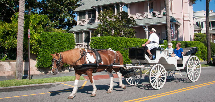 Private carriage tour on the battery in Charleston, SC